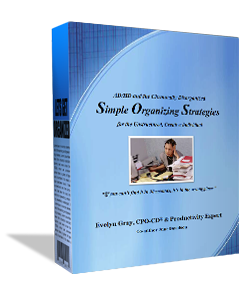 Simple Organizing Strategies Book by Evelyn Gray